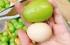 """حبته أكبر من بيضة الدجاج.. اليابان تصدر """"العنب العملاق"""""""