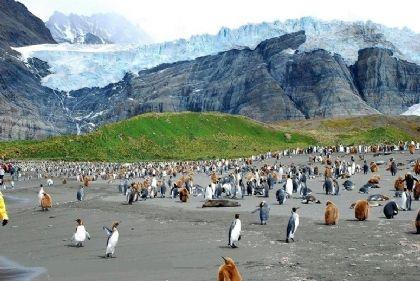 اكتشاف 12 بركان ضخم تحت الماء قرب جزر الساندويش