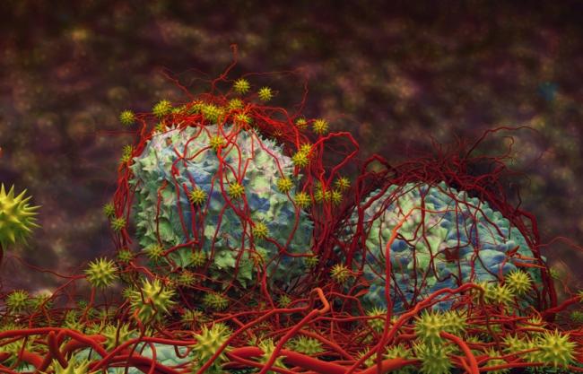 6 معلومات مهمة عن السرطان: من موت الخلايا المبرمج إلى العلاج الكيماوي