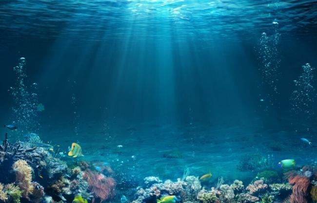 مناجم من الذهب وثروات تقدر بمليارات الدولارات.. 15 حقيقة لم تكن تعلمها عن عالم المحيطات