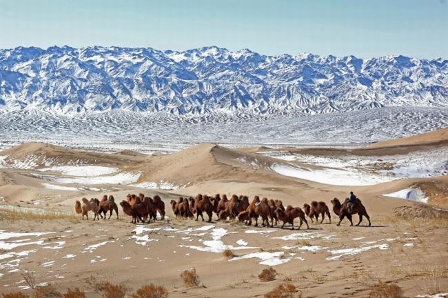 بالصور| 10 صحارى مذهلة في العالم تدعوك لاستكشاف المناظر الطبيعية الصحراوية