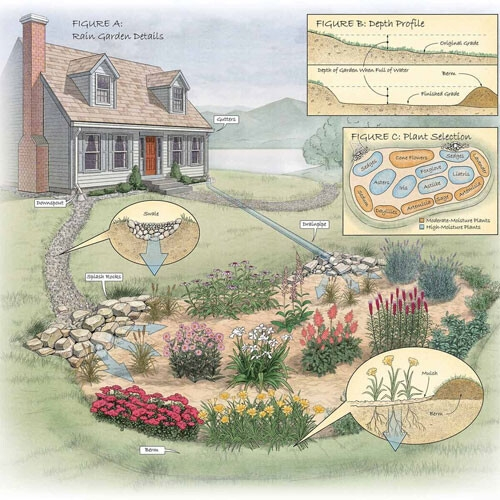 من الحواكير الى الأسطح الزرقاء.. كيف للزراعة الحضريّة أن تخفف من حدّة الفيضانات؟