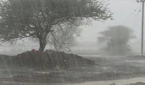 تطورات الحالة الجوية المتوقعة للساعات القادمة .. النشرة الصباحية