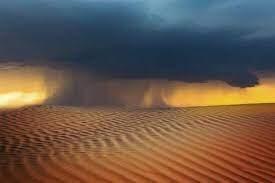 كيف تنشأ وكيف تؤثر في المناخ العالمي؟ ما يجب أن تعرفه عن العواصف الرملية