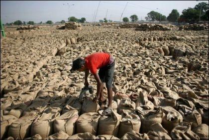 نتيجة تزايد موجات الجفاف والفيضانات...30% زيادة متوقعة فى أسعار الغذاء عالميًا