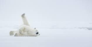 لم يقسها الإنسان بنفسه من شدة البرودة.. ما أبرد مكان على وجه الأرض؟