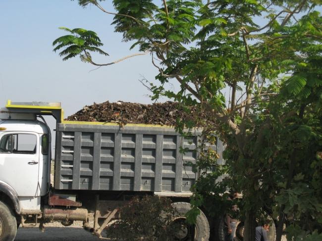 """تحقيق استقصائي """"سماد النفايات"""" فلسطينيون يأكلون خضاراً تتغذى على نفايات إسرائيلية مطحونة"""
