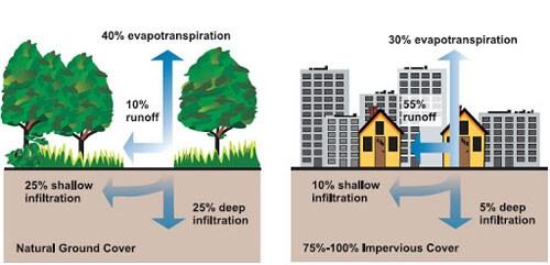 """بين التغوّل العمراني وغياب الحواكير..لماذا نحن بحاجة إلى """"اللامركزيّة"""" في إدارة مياه الأمطار؟"""