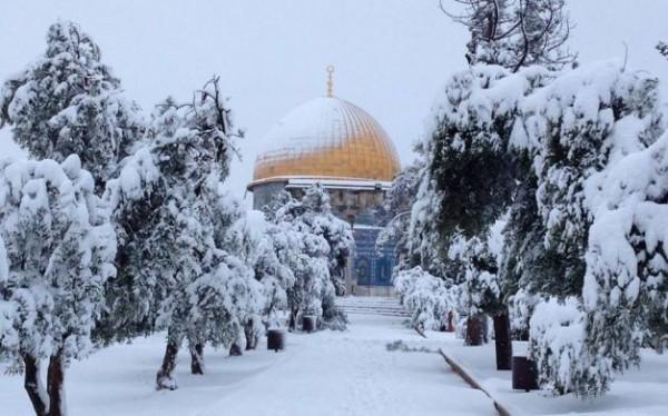 طقس فلسطين ينشر توقعاته المفصلة للأشهر الثلاثة القادمة - ثلوج وأمطار أعلى من معدلاتها بمشيئة الله