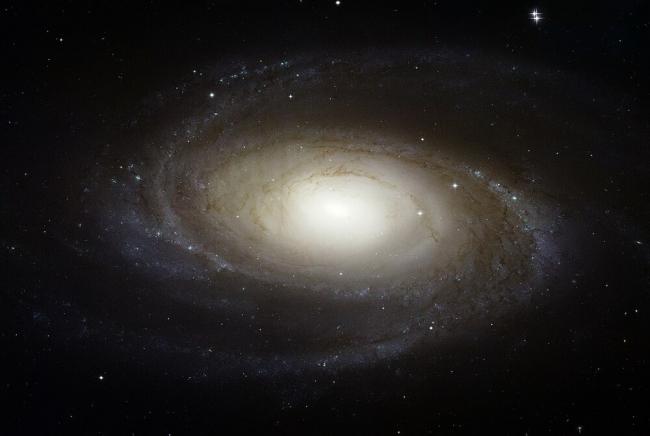 من أين يأتي الكربون؟ لولا النجوم الميتة لما كان للحياة أن تنشأ على الأرض
